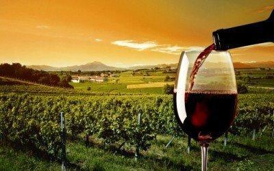 Wine Basics for The Superyacht Stewardess