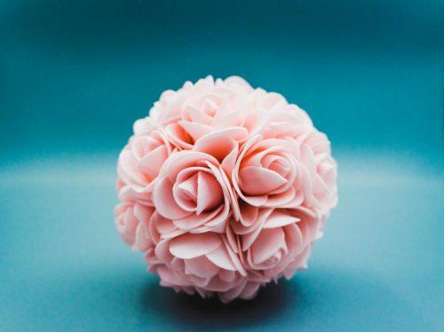 Rose Var